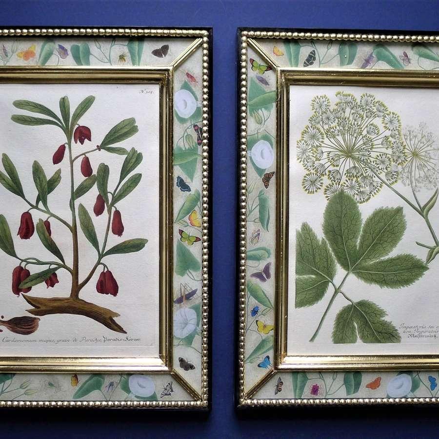 18th & 19th century engravings